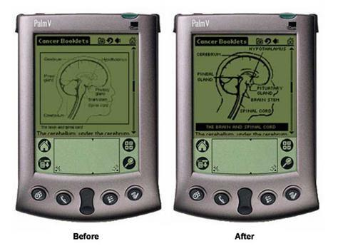 An image showing before and after shots of a graphic once it had been improved for a PDA screen.
